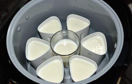 Как сделать йогурт в банках в мультиварке